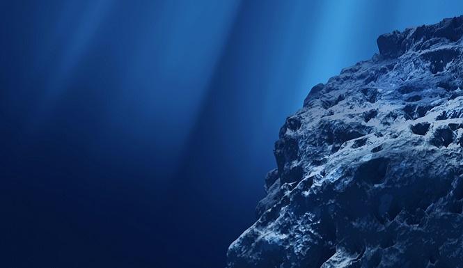 Deep-Ocean-Teems-With-life